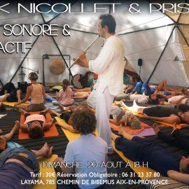 dimanche 20 août * Concert méditatif avec Erik Nicollet