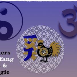 vendredi 1er septembre * Atelier Yin Yang : Yoga et énergie